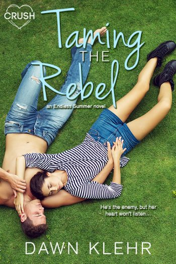 TAMING THE REBEL (Endless Summer) by Dawn Klehr