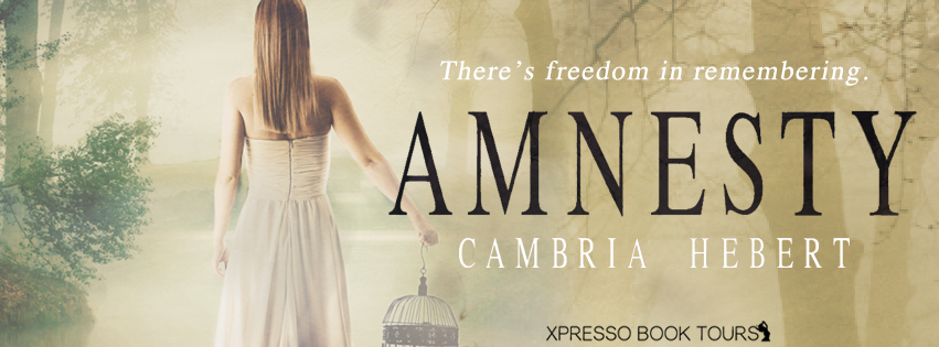 AMNESTY Cover Reveal