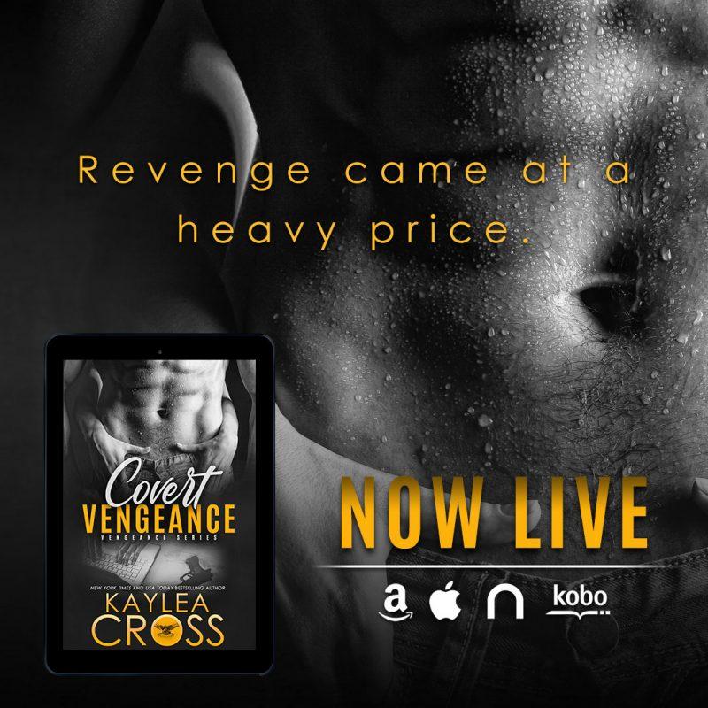 COVERT VENGEANCE Teaser