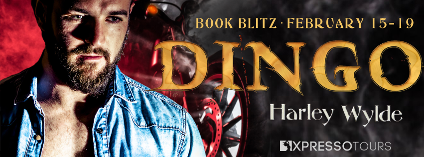 DINGO Book Blitz