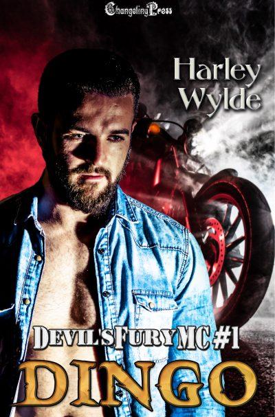 DINGO (Devil's Fury MC Series #1) by Harley Wylde